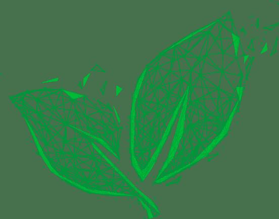 Produits écologique